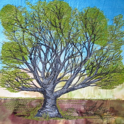 Hadley Common beech 8x8""