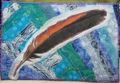 """redtail feather 5x7"""""""